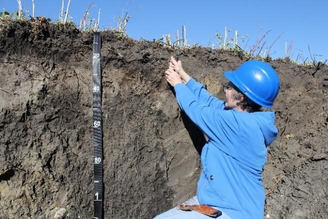 Soil Survey Tenders